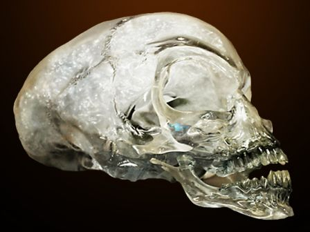 Crystal Skulls Symbolism The Crystal Skulls Have Been