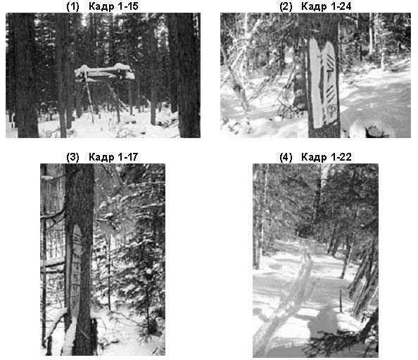 Images from the recovered camera