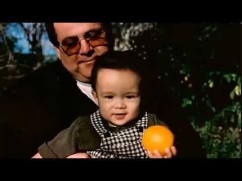 Gus Taylor reincarnated