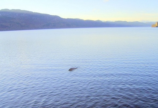 The Loch Ness monster has finally been caught on camera?