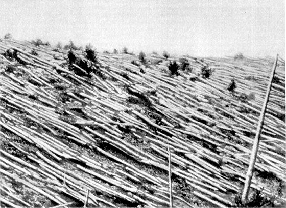 Unexplained events – THE TUNGUSKA EVENT