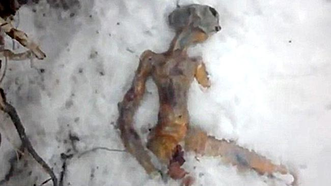frozen alien