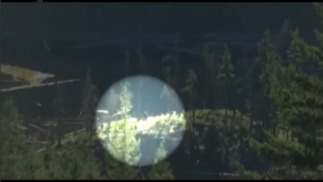 footage of mysterious 'Bigfoot'