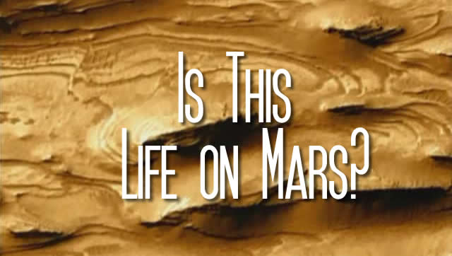 Discovery of world's oldest fossil suggests there was alien life on Mars!
