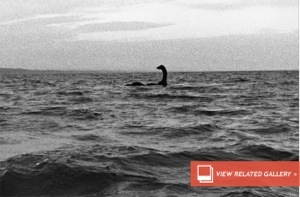 unexplained Mysteries of Giant Fish, Loch Ness and Sea Serpents