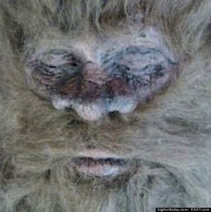 Bigfoot Hunter  Claims He Killed The Hairy Beast