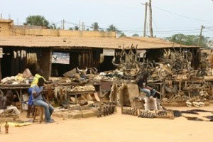 Akodessewa Voodoo Market: Lomé, Togo