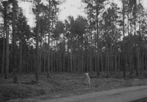 Unexplained photo – Alien captured on film in 1930's Alaska – Strange Unexplained Mysteries