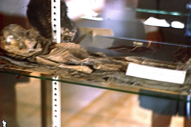 Alien? Roswell Slides unveiled