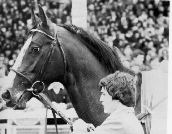 The mystery of Shergar, the missing racehorse