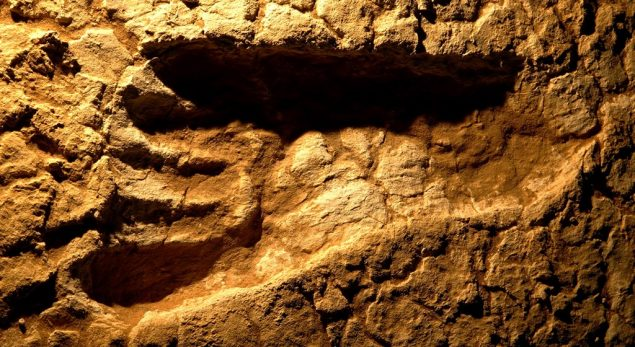 Strange mystery of the oldest fossil footprints!