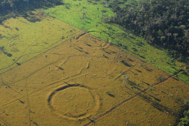 Hundreds of mysterious ancient earthworks discovered in the Amazon